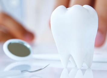 Tooth Therapy Dental Clinic